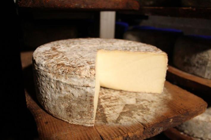 Fourme de Rochefort
