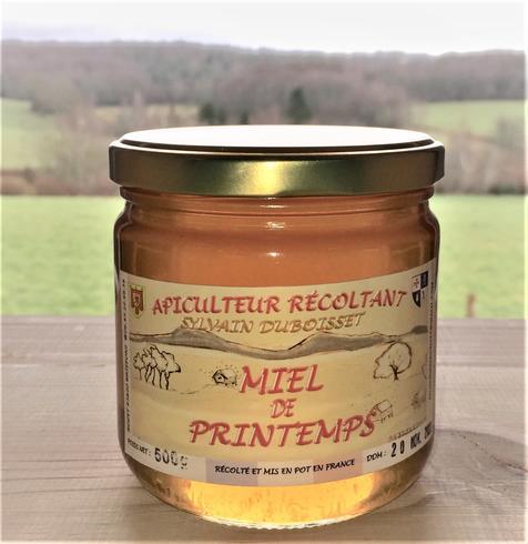 Miel de printemps 500g